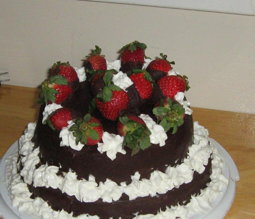 Astonishing Misadventures In Baking The Brazilian Chocolate Chiffon Cake Funny Birthday Cards Online Inifodamsfinfo
